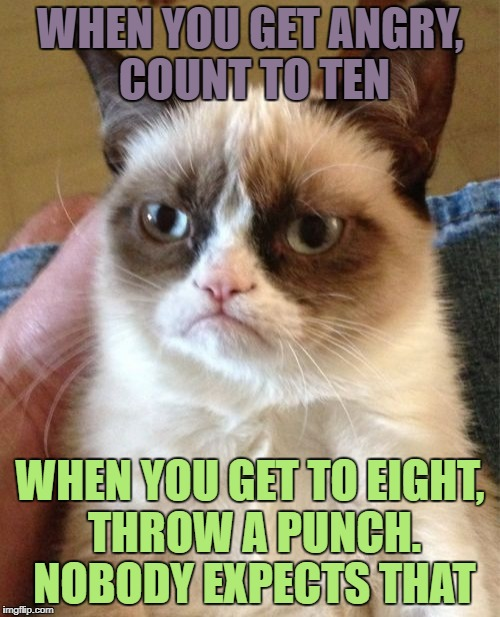 Grumpy Cat Meme | WHEN YOU GET ANGRY, COUNT TO TEN WHEN YOU GET TO EIGHT, THROW A PUNCH. NOBODY EXPECTS THAT | image tagged in memes,grumpy cat | made w/ Imgflip meme maker