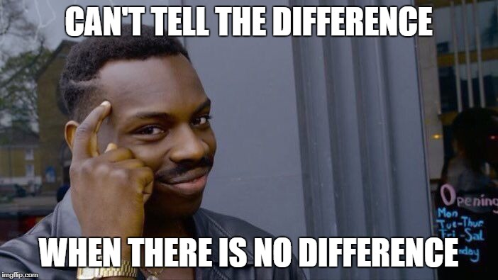 Roll Safe Think About It Meme | CAN'T TELL THE DIFFERENCE WHEN THERE IS NO DIFFERENCE | image tagged in memes,roll safe think about it | made w/ Imgflip meme maker