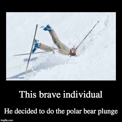 Faceplants 1 | This brave individual | He decided to do the polar bear plunge | image tagged in funny,demotivationals | made w/ Imgflip demotivational maker
