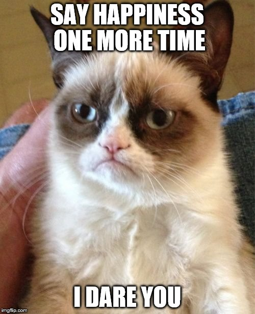 Grumpy Cat Meme | SAY HAPPINESS ONE MORE TIME I DARE YOU | image tagged in memes,grumpy cat | made w/ Imgflip meme maker