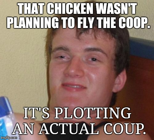 Conspiracy Fried Chicken | THAT CHICKEN WASN'T PLANNING TO FLY THE COOP. IT'S PLOTTING AN ACTUAL COUP. | image tagged in memes,10 guy,bad pun | made w/ Imgflip meme maker