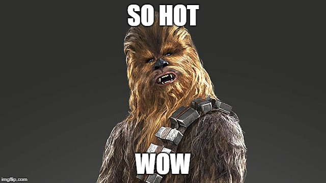 chewbacca | SO HOT WOW | image tagged in chewbacca | made w/ Imgflip meme maker