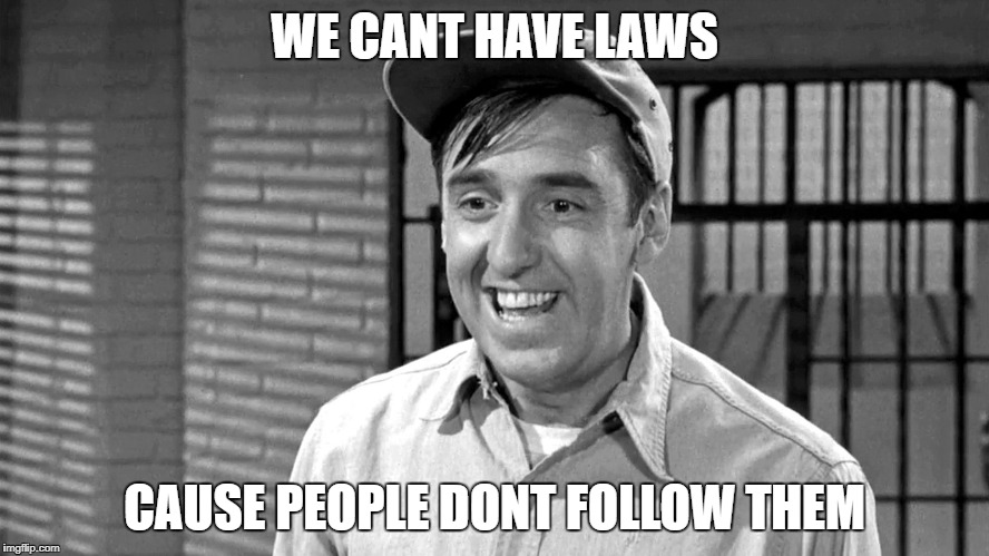 Golly | WE CANT HAVE LAWS CAUSE PEOPLE DONT FOLLOW THEM | image tagged in golly | made w/ Imgflip meme maker