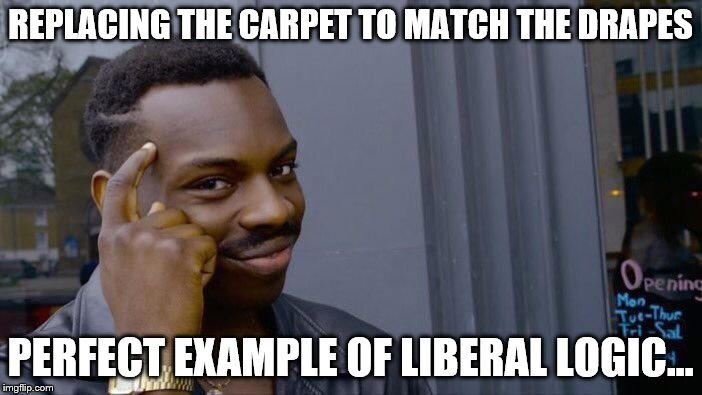 Roll Safe Think About It Meme | REPLACING THE CARPET TO MATCH THE DRAPES PERFECT EXAMPLE OF LIBERAL LOGIC... | image tagged in memes,roll safe think about it | made w/ Imgflip meme maker