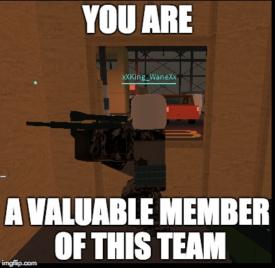 I mean, it is roblox... | YOU ARE A VALUABLE MEMBER OF THIS TEAM | image tagged in thanks for nothing | made w/ Imgflip meme maker