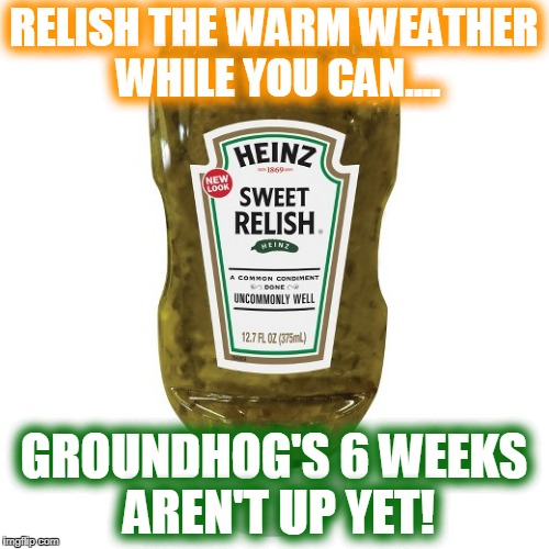 RELISH THE WARM WEATHER WHILE YOU CAN.... GROUNDHOG'S 6 WEEKS AREN'T UP YET! | made w/ Imgflip meme maker