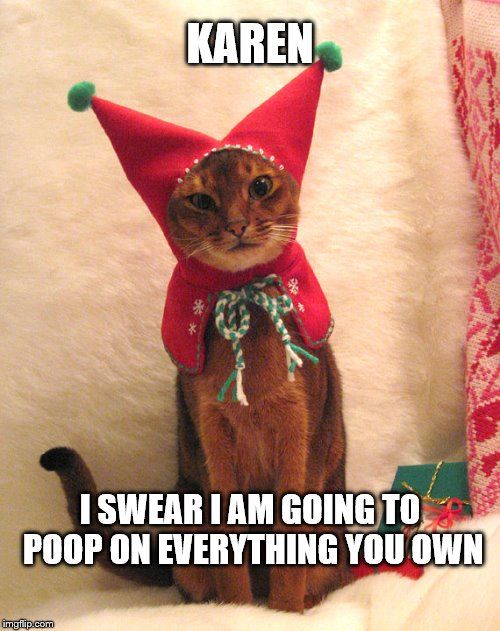 Paybacks are a... | KAREN I SWEAR I AM GOING TO POOP ON EVERYTHING YOU OWN | image tagged in elf cat,poop | made w/ Imgflip meme maker