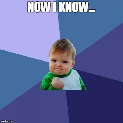 Success Kid Meme | NOW I KNOW... | image tagged in memes,success kid | made w/ Imgflip meme maker