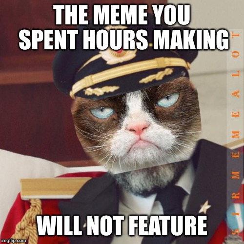 THE MEME YOU SPENT HOURS MAKING WILL NOT FEATURE | image tagged in cat-pain obvious,memes | made w/ Imgflip meme maker