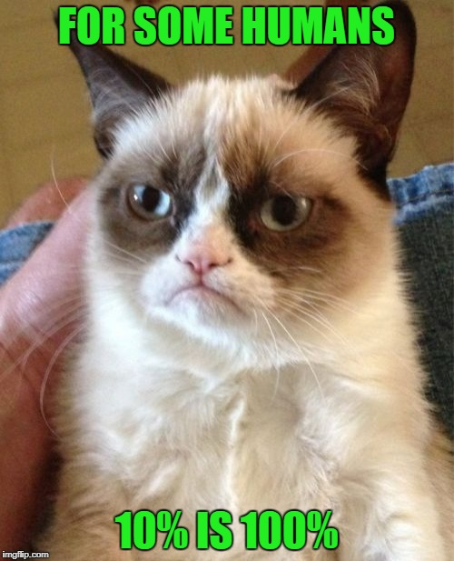 Grumpy Cat Meme | FOR SOME HUMANS 10% IS 100% | image tagged in memes,grumpy cat | made w/ Imgflip meme maker