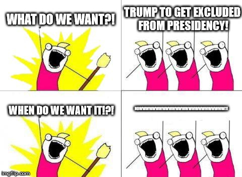 What Do We Want Meme | WHAT DO WE WANT?! TRUMP TO GET EXCLUDED FROM PRESIDENCY! WHEN DO WE WANT IT!?! NOWWWWWWWWWWWWWWWWWWWWWWWWWW!!! | image tagged in memes,what do we want | made w/ Imgflip meme maker