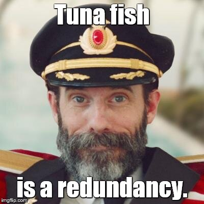 captain obvious | Tuna fish is a redundancy. | image tagged in captain obvious | made w/ Imgflip meme maker