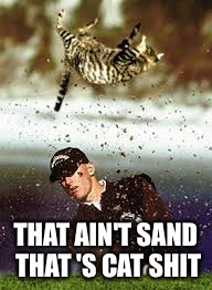 THAT AIN'T SAND THAT 'S CAT SHIT | image tagged in cat golfing | made w/ Imgflip meme maker