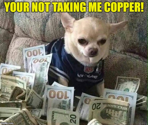 YOUR NOT TAKING ME COPPER! | made w/ Imgflip meme maker