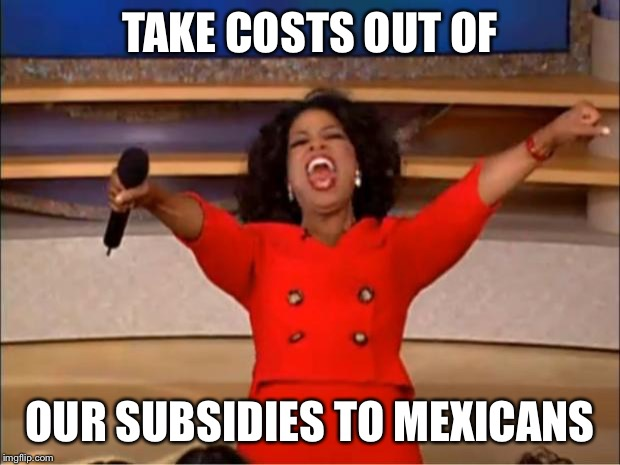 Oprah You Get A Meme | TAKE COSTS OUT OF OUR SUBSIDIES TO MEXICANS | image tagged in memes,oprah you get a | made w/ Imgflip meme maker