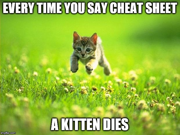 Every time I smile God Kills a Kitten | EVERY TIME YOU SAY CHEAT SHEET A KITTEN DIES | image tagged in every time i smile god kills a kitten | made w/ Imgflip meme maker