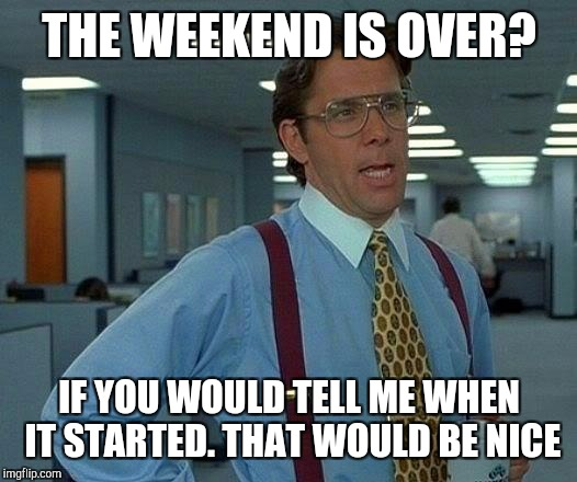 Weekends  | THE WEEKEND IS OVER? IF YOU WOULD TELL ME WHEN IT STARTED. THAT WOULD BE NICE | image tagged in memes,that would be great,funny,weekend,friday,mondays | made w/ Imgflip meme maker