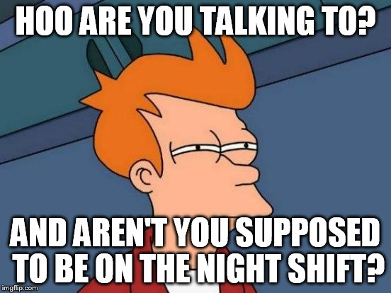 Futurama Fry Meme | HOO ARE YOU TALKING TO? AND AREN'T YOU SUPPOSED TO BE ON THE NIGHT SHIFT? | image tagged in memes,futurama fry | made w/ Imgflip meme maker