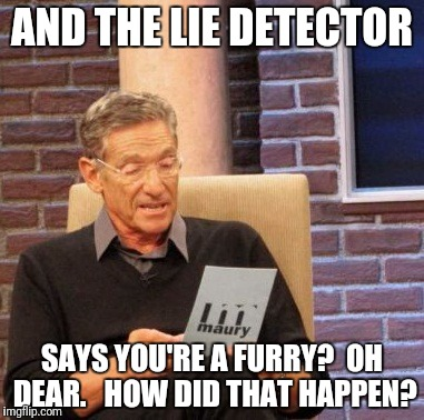 Maury Lie Detector Meme | AND THE LIE DETECTOR SAYS YOU'RE A FURRY?  OH DEAR.   HOW DID THAT HAPPEN? | image tagged in memes,maury lie detector | made w/ Imgflip meme maker