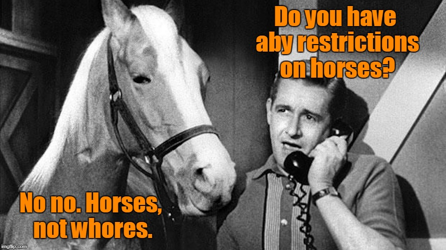 Do you have aby restrictions on horses? No no. Horses, not w**res. | made w/ Imgflip meme maker