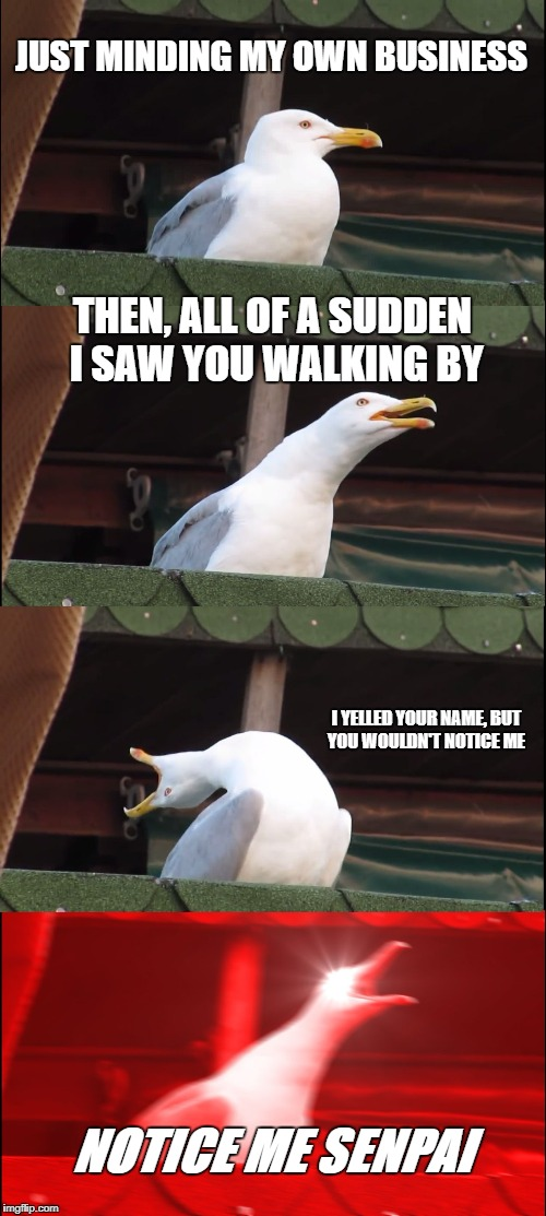 Inhaling Seagull Meme | JUST MINDING MY OWN BUSINESS THEN, ALL OF A SUDDEN I SAW YOU WALKING BY I YELLED YOUR NAME, BUT YOU WOULDN'T NOTICE ME NOTICE ME SENPAI | image tagged in memes,inhaling seagull | made w/ Imgflip meme maker