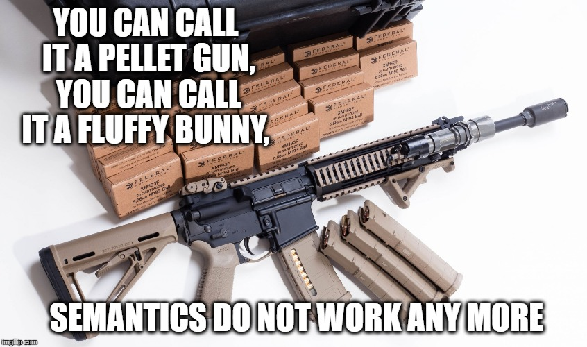 AR Ban | YOU CAN CALL IT A PELLET GUN, YOU CAN CALL IT A FLUFFY BUNNY, SEMANTICS DO NOT WORK ANY MORE | image tagged in ar ban | made w/ Imgflip meme maker