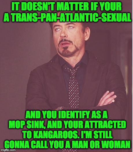 as a purple unicorn. i think its wrong there isn't more advocates speaking out for my kind | IT DOESN'T MATTER IF YOUR A TRANS-PAN-ATLANTIC-SEXUAL AND YOU IDENTIFY AS A MOP SINK, AND YOUR ATTRACTED TO KANGAROOS. I'M STILL GONNA CALL  | image tagged in memes,face you make robert downey jr | made w/ Imgflip meme maker