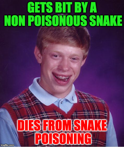 gets revived in hospital. nurse smothers him with a pillow | GETS BIT BY A NON POISONOUS SNAKE DIES FROM SNAKE POISONING | image tagged in memes,bad luck brian | made w/ Imgflip meme maker