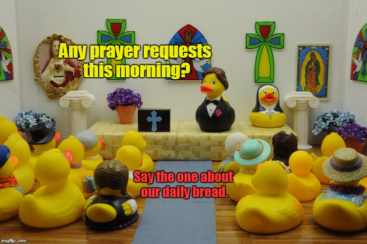 Pastor D.B.McQuacken saying mass.  | Any prayer requests this morning? Say the one about our daily bread. | image tagged in funny,ducks,prayer,bread,church | made w/ Imgflip meme maker
