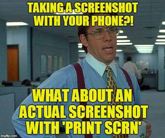 TAKING A SCREENSHOT WITH YOUR PHONE?! WHAT ABOUT AN ACTUAL SCREENSHOT WITH 'PRINT SCRN' | image tagged in memes,that would be great | made w/ Imgflip meme maker