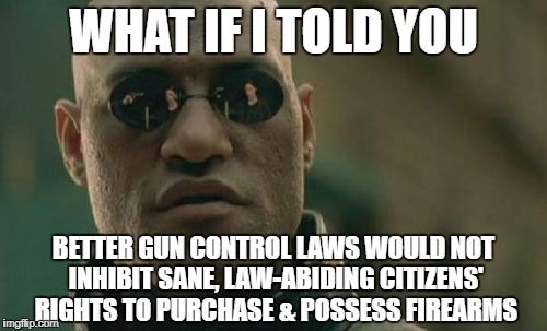 A license is required for driving, fishing, and marriage; why not gun-ownership? | WHAT IF I TOLD YOU BETTER GUN CONTROL LAWS WOULD NOT INHIBIT SANE, LAW-ABIDING CITIZENS' RIGHTS TO PURCHASE & POSSESS FIREARMS | image tagged in memes,matrix morpheus,gun control,2nd amendment | made w/ Imgflip meme maker