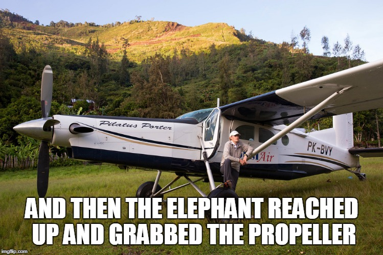 AND THEN THE ELEPHANT REACHED UP AND GRABBED THE PROPELLER | made w/ Imgflip meme maker