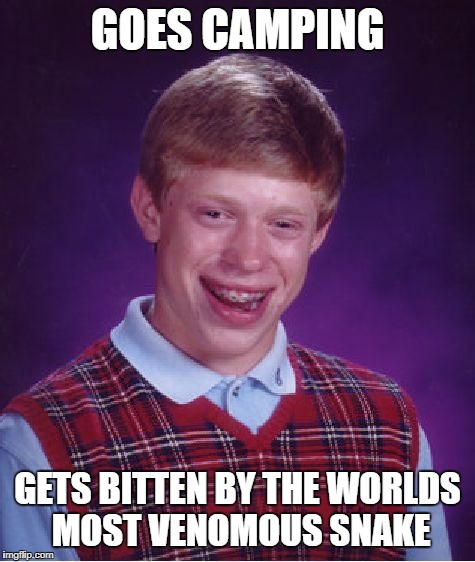 Bad Luck Brian Meme | GOES CAMPING GETS BITTEN BY THE WORLDS MOST VENOMOUS SNAKE | image tagged in memes,bad luck brian | made w/ Imgflip meme maker