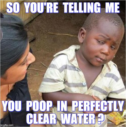 Third world skeptical kid | SO  YOU'RE  TELLING  ME YOU  POOP  IN  PERFECTLY  CLEAR  WATER ? | image tagged in poop,funny,memes | made w/ Imgflip meme maker