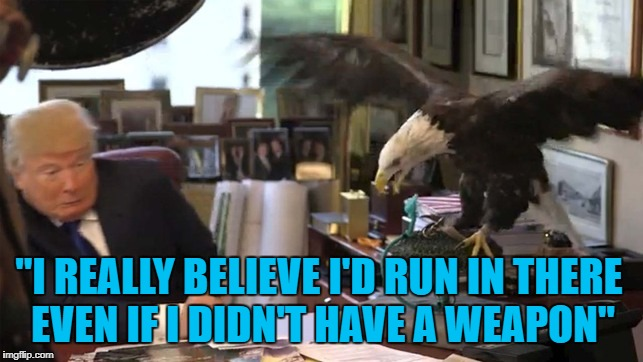 "The bone spurs must be better... | ""I REALLY BELIEVE I'D RUN IN THERE EVEN IF I DIDN'T HAVE A WEAPON"" 