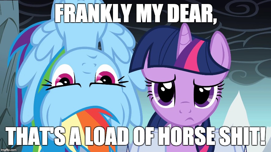 When the person you're arguing with, brings up bullshit arguments. | FRANKLY MY DEAR, THAT'S A LOAD OF HORSE SHIT! | image tagged in memes,my little pony,nsfw | made w/ Imgflip meme maker