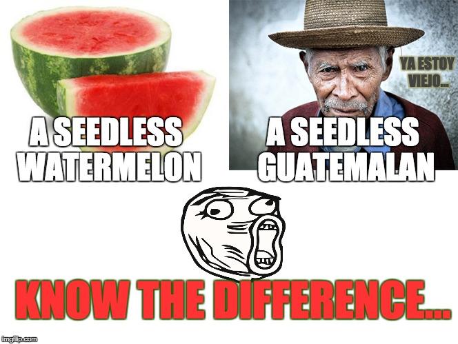 25cav1 watermelon vs guatemalan 2 0 imgflip