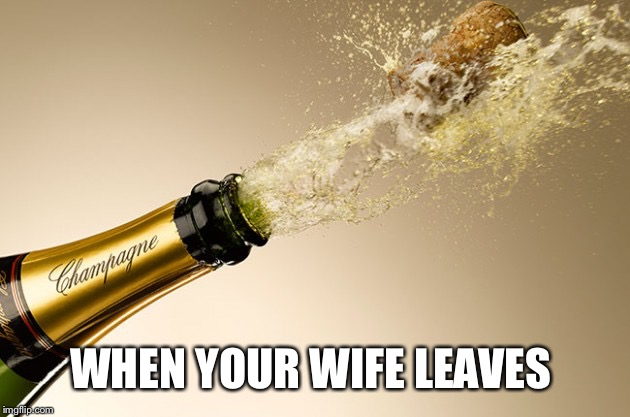 WHEN YOUR WIFE LEAVES | made w/ Imgflip meme maker