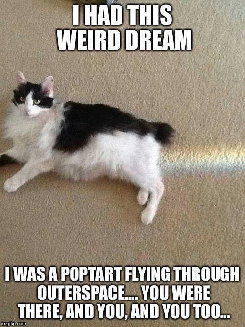 I HAD THIS WEIRD DREAM I WAS A POPTART FLYING THROUGH OUTERSPACE.... YOU WERE THERE, AND YOU, AND YOU TOO... | image tagged in memes,poptart,space,rainbow | made w/ Imgflip meme maker