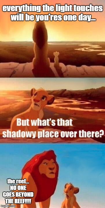 lion king | everything the light touches will be you'res one day... the reef... NO ONE GOES BEYOND THE REEF!!!! | image tagged in memes,simba shadowy place,moana | made w/ Imgflip meme maker