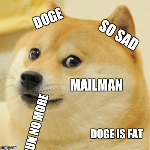 Doge Meme | DOGE SO SAD MAILMAN RUN NO MORE DOGE IS FAT | image tagged in memes,doge | made w/ Imgflip meme maker