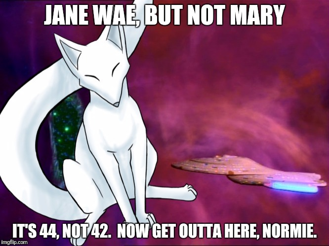 JANE WAE, BUT NOT MARY IT'S 44, NOT 42.  NOW GET OUTTA HERE, NORMIE. | made w/ Imgflip meme maker