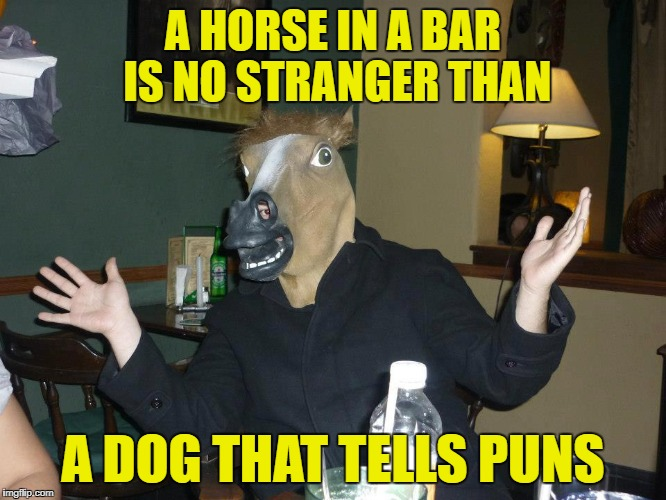 A HORSE IN A BAR IS NO STRANGER THAN A DOG THAT TELLS PUNS | made w/ Imgflip meme maker