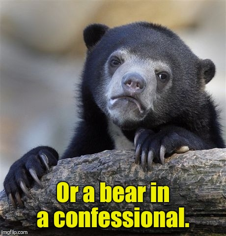 Confession Bear Meme | Or a bear in a confessional. | image tagged in memes,confession bear | made w/ Imgflip meme maker