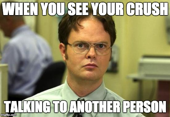 Dwight Schrute Meme | WHEN YOU SEE YOUR CRUSH TALKING TO ANOTHER PERSON | image tagged in memes,dwight schrute | made w/ Imgflip meme maker