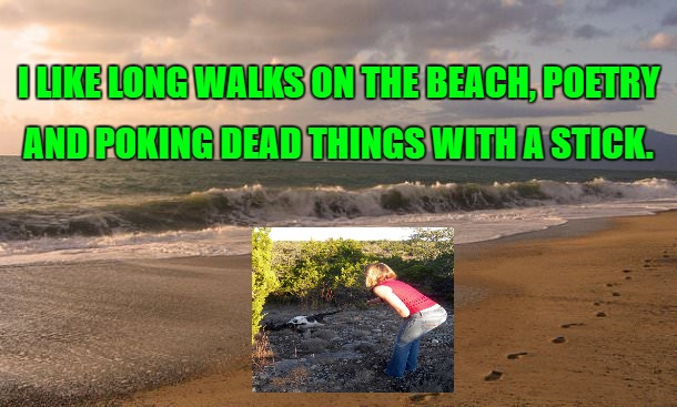 I LIKE LONG WALKS ON THE BEACH, POETRY AND POKING DEAD THINGS WITH A STICK. | image tagged in dark humor,sick humor | made w/ Imgflip meme maker