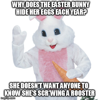 The Easter Bunny truth at last | WHY DOES THE EASTER BUNNY HIDE HER EGGS EACH YEAR? SHE DOESN'T WANT ANYONE TO KNOW SHE'S SCR*WING A ROOSTER | image tagged in easter bunny,easter eggs | made w/ Imgflip meme maker