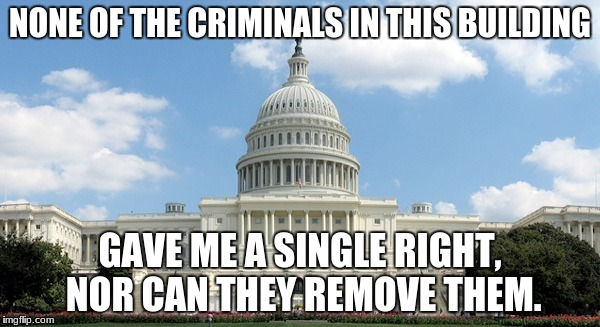 NONE OF THE CRIMINALS IN THIS BUILDING GAVE ME A SINGLE RIGHT, NOR CAN THEY REMOVE THEM. | image tagged in ugh congress | made w/ Imgflip meme maker