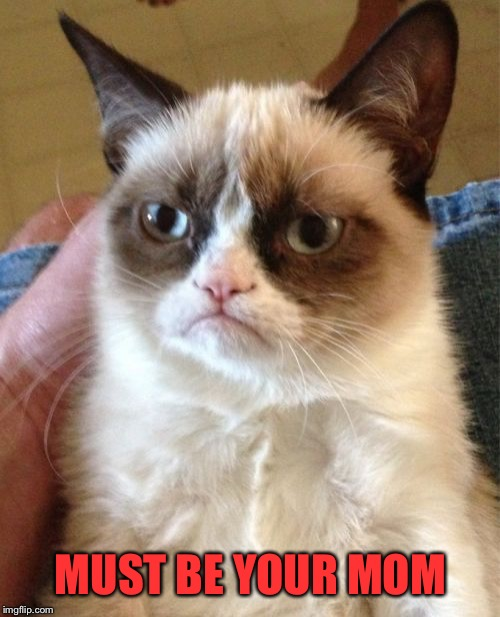 Grumpy Cat Meme | MUST BE YOUR MOM | image tagged in memes,grumpy cat | made w/ Imgflip meme maker