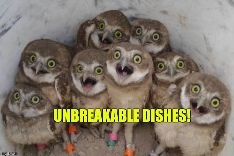 UNBREAKABLE DISHES! | made w/ Imgflip meme maker